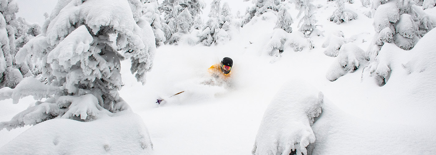 Jay Peak, Vermont - tree powder day